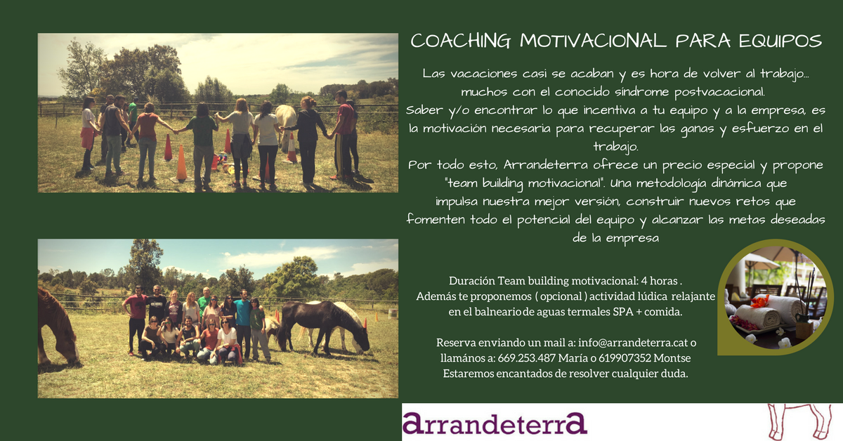 Motivational Coaching for Teams