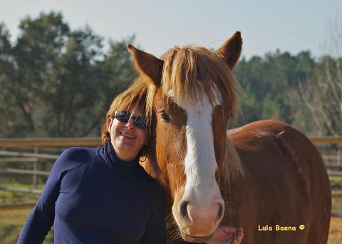 Coaching session attended horses exclusively for people with fibromyalgia.