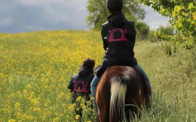 Horseback riding in Vilobí